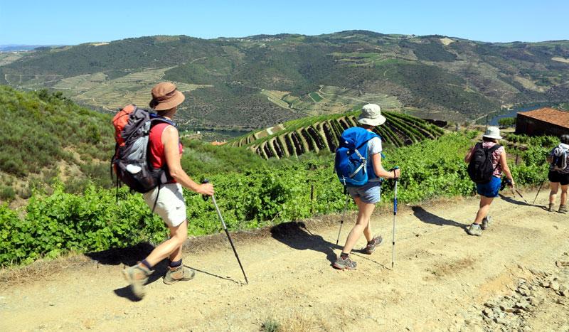 Douro Walking Tour